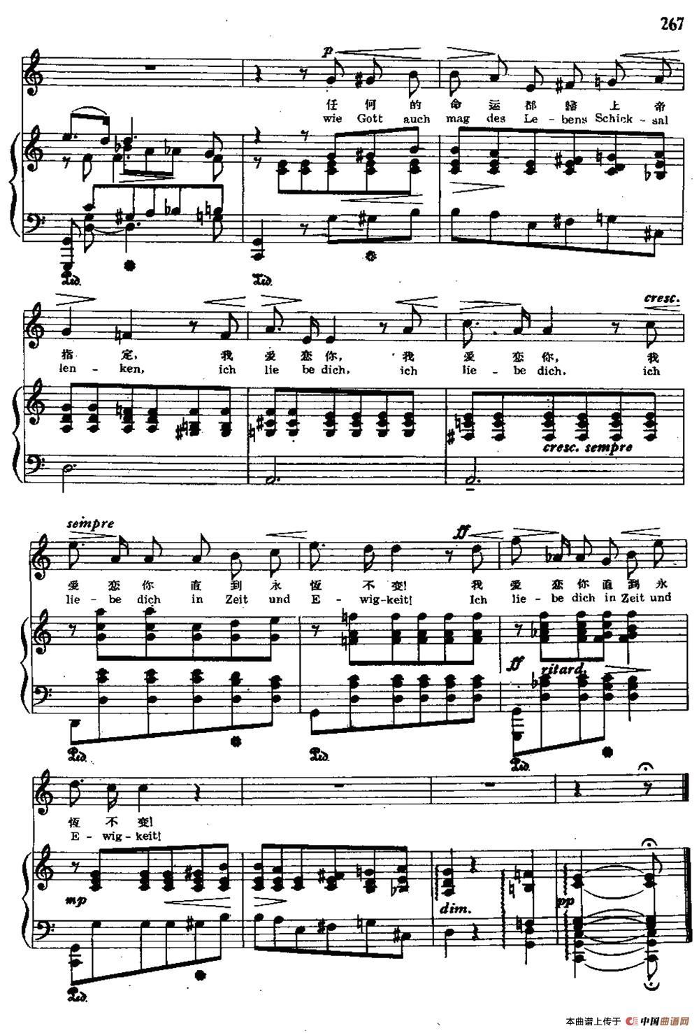 愿将我的爱给你歌谱-照 正谱 外国曲谱 中国曲谱网
